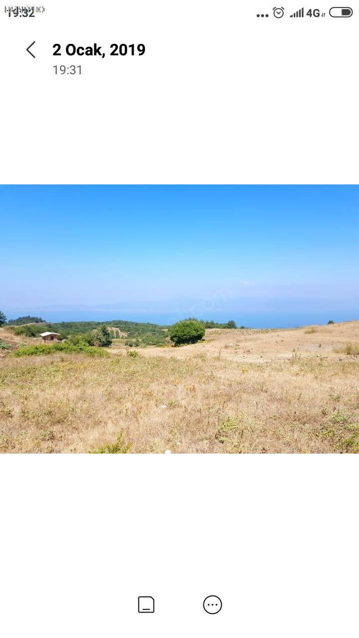 Land FOR SALE Türkiye Çanakkale Lapseki güreci Property Owner $150001
