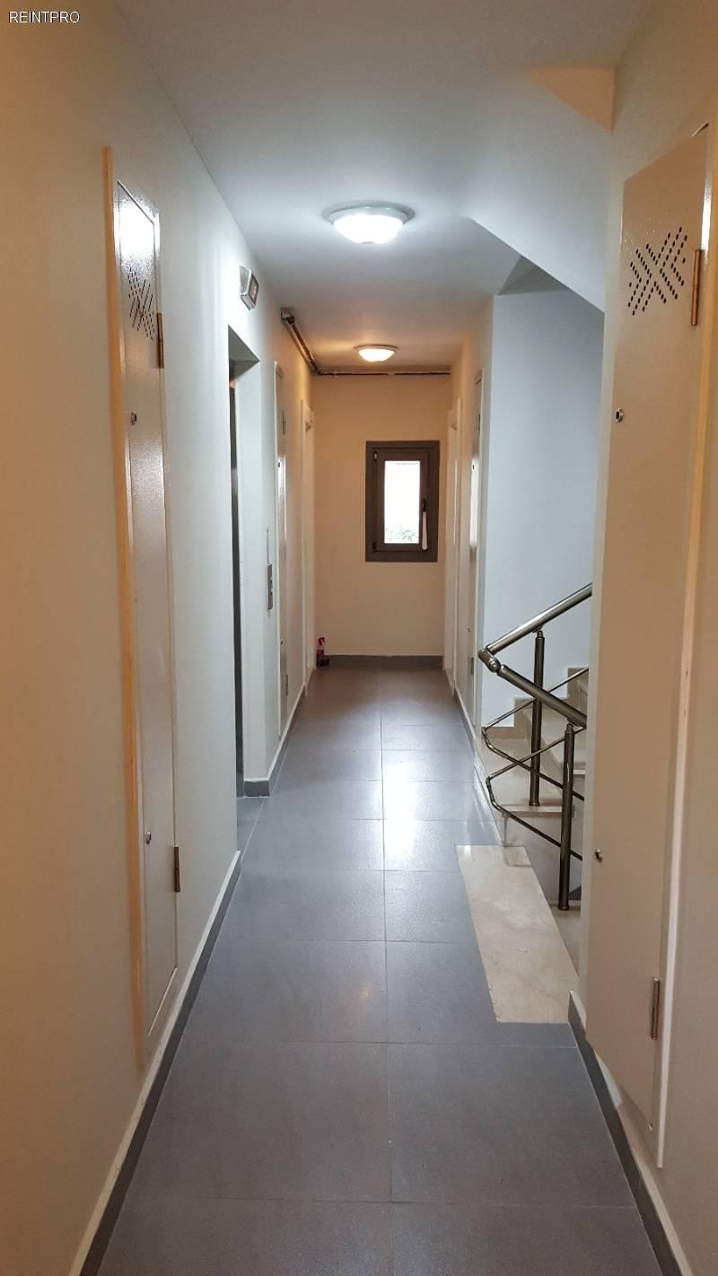 Flat FOR SALE Türkiye Istanbul Bahçelievler Property Owner $1600007