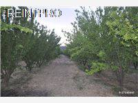 Farm FOR SALE Türkiye Aydin kuşadası-germencik Property Owner $11000003