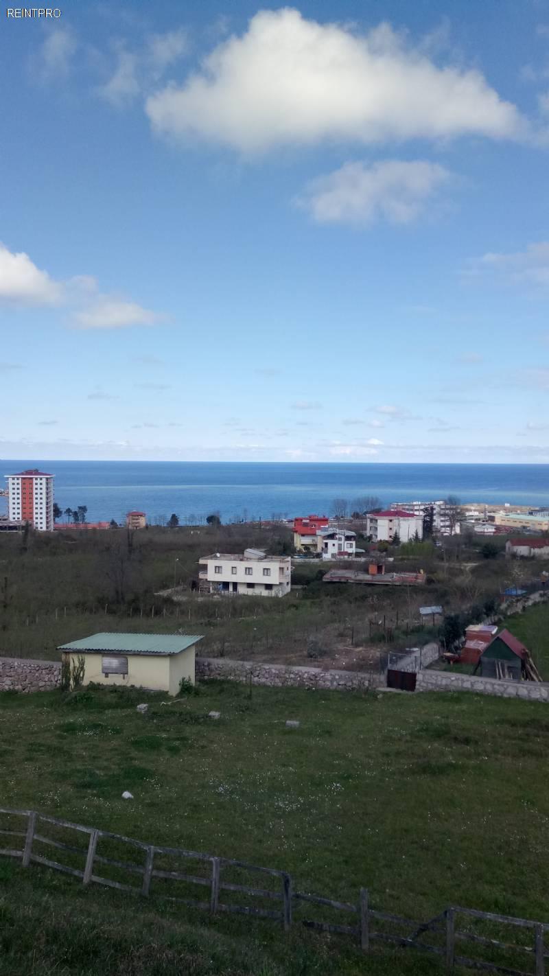 Land  FOR SALE Türkiye  Giresun
