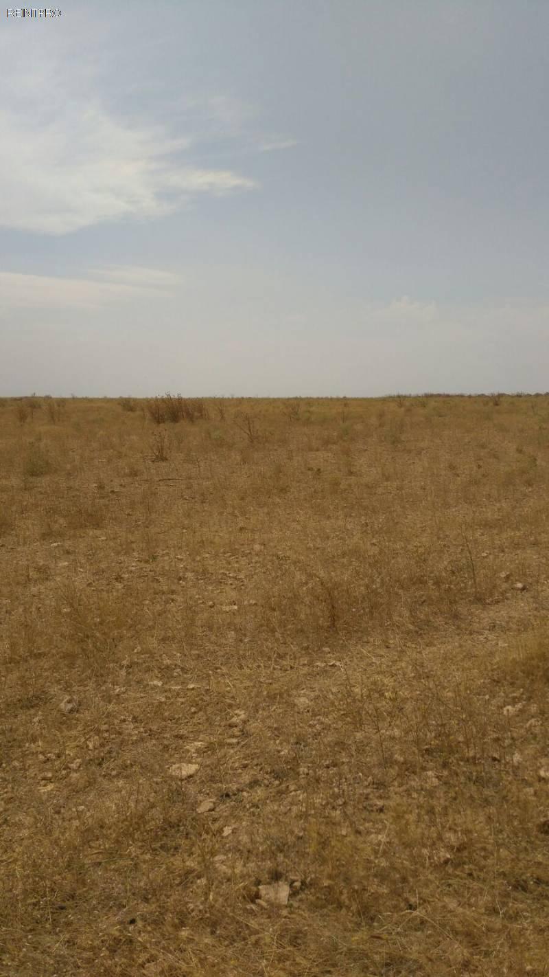 Lands  FOR SALE Türkiye  Konya