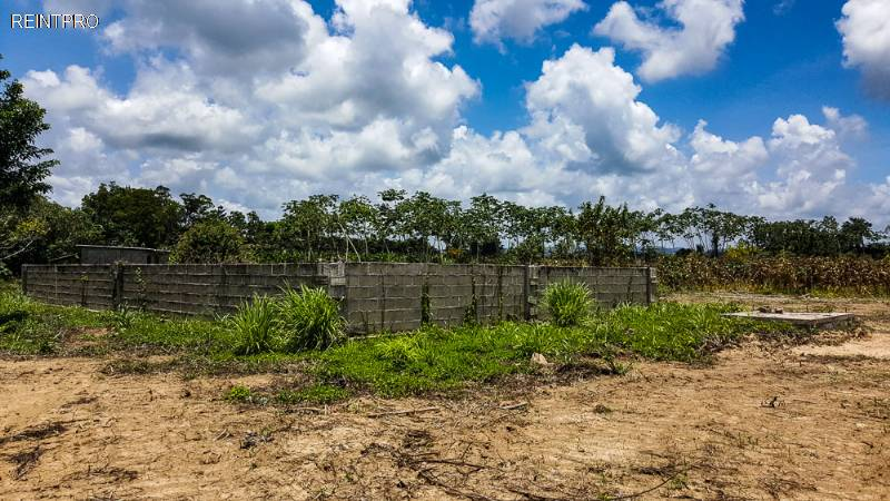 Farm  FOR SALE Belize  Dangriga