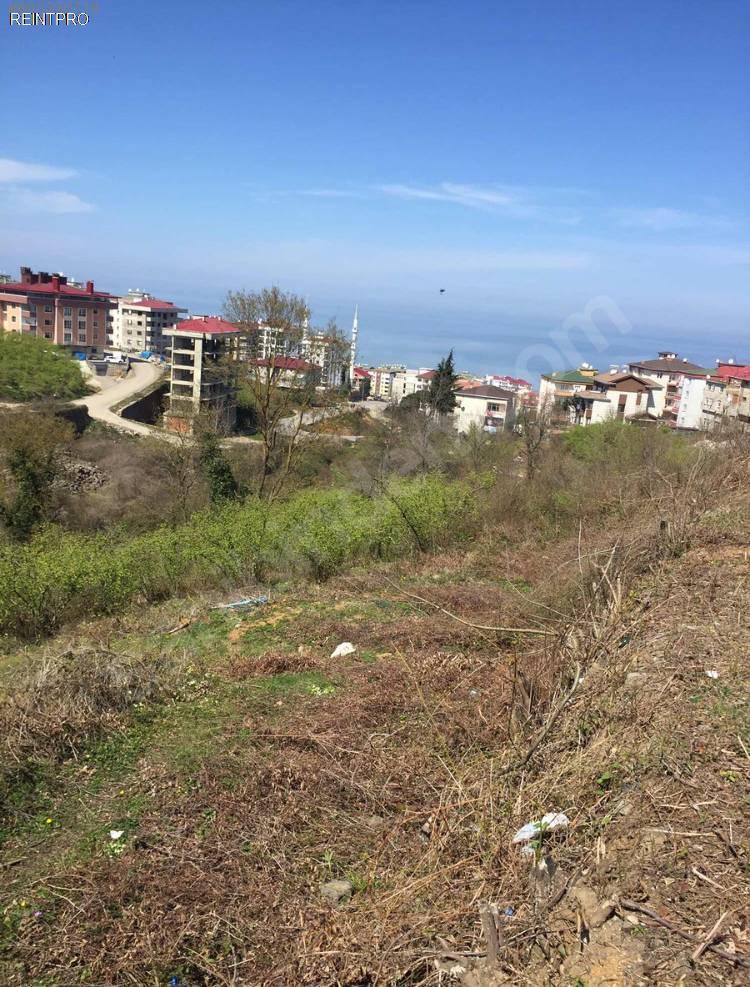 Land FOR SALE Türkiye Trabzon 1 nolu Bostancı mahallesi Property Owner $10000001