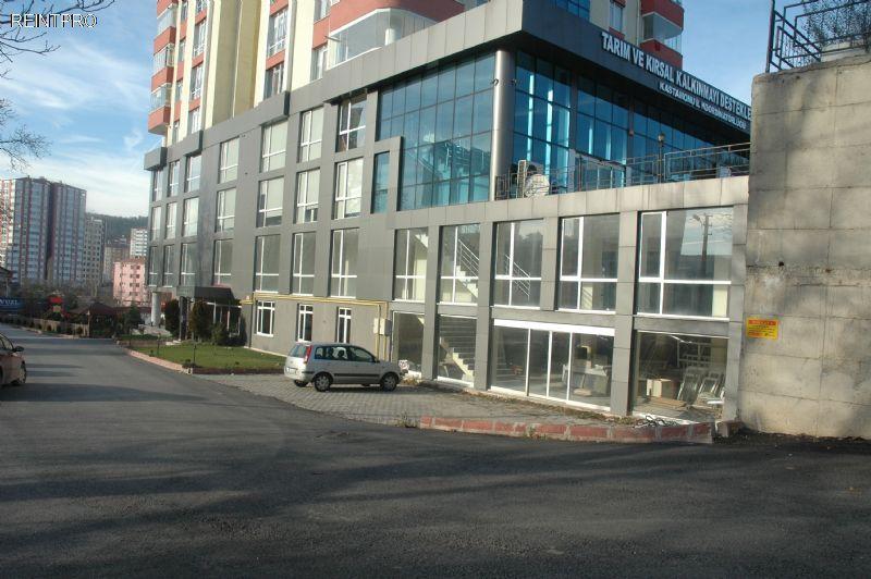 Plaza Floor  FOR SALE Türkiye  Kastamonu