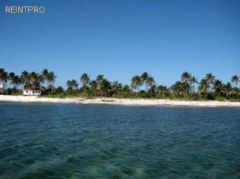 Land  FOR SALE Belize  Belize