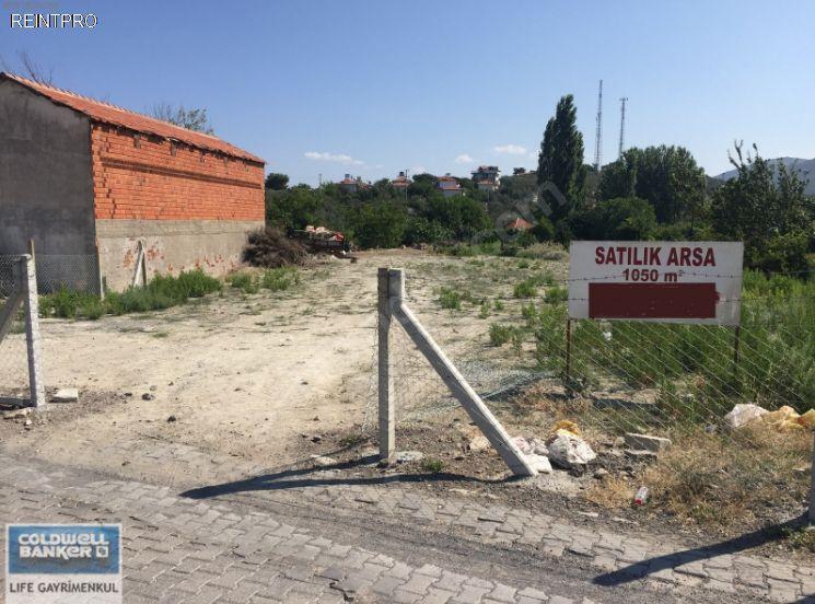 Lands FOR SALE Türkiye Izmir Dikili;Bademli Real Estate Agents $800004