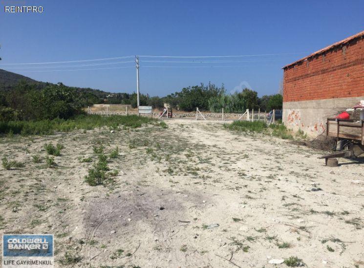 Lands FOR SALE Türkiye Izmir Dikili;Bademli Real Estate Agents $800006