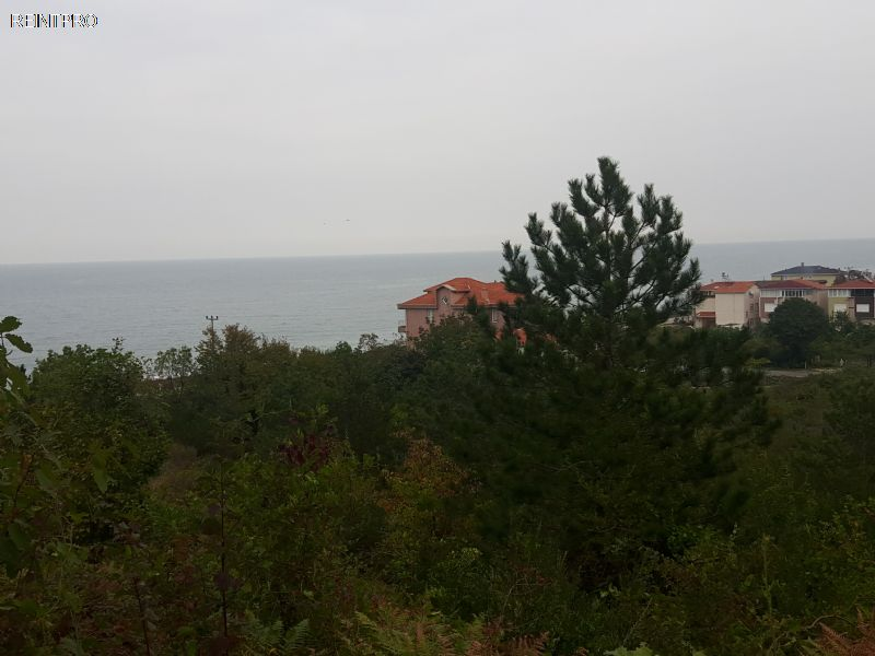 Land FOR SALE Türkiye Kastamonu gebeş Real Estate Agents $450001
