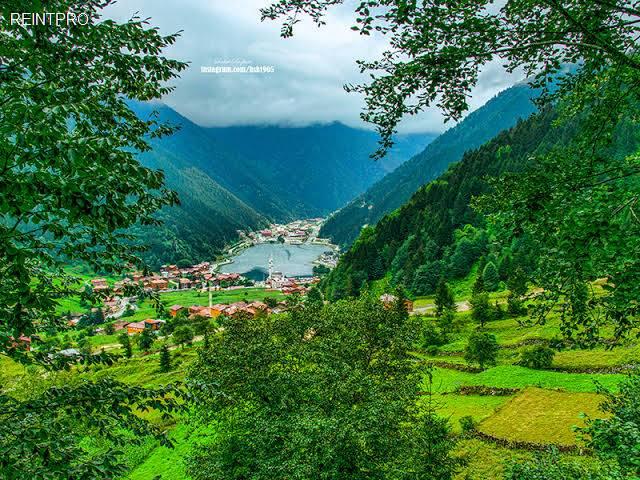 قطعة الارض  للبيع تركي]  Trabzon
